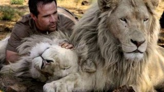 Kevin Richardson the Lion Ranger