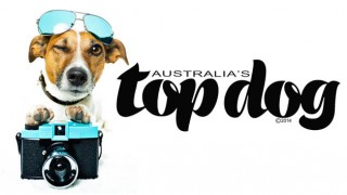 Australia's Top Dog Competiton Winners 2014