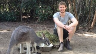 This guy lives with 40 Kangaroos!