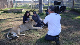 Australia's sanctuary for retired zoo & circus animals