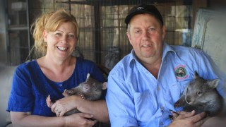 Meet the couple who run a Wombat ER!
